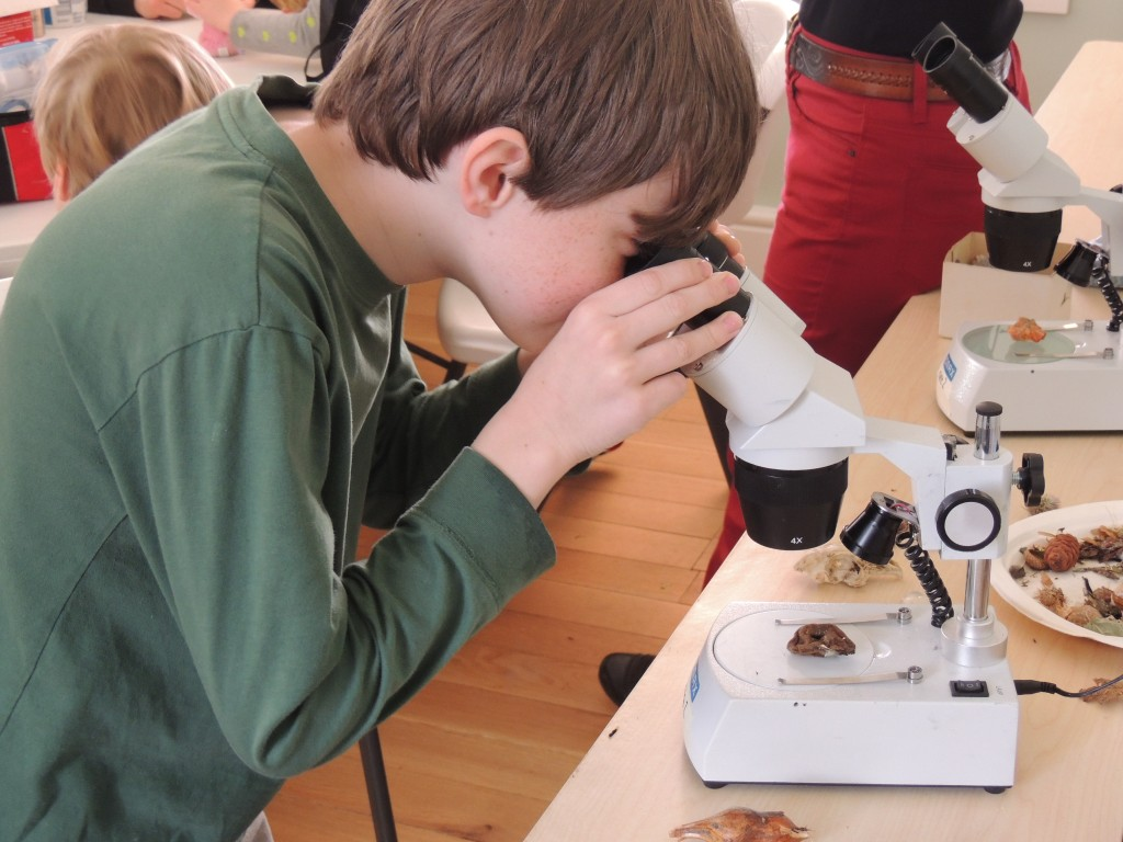 ECO Camper with Microscope