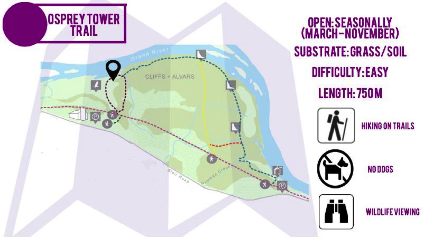 Osprey Tower Trail