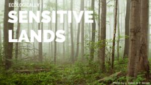 ecologically sensitive lands, forest